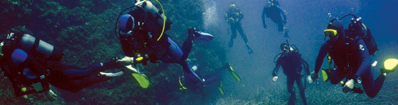 Diving Palinuro