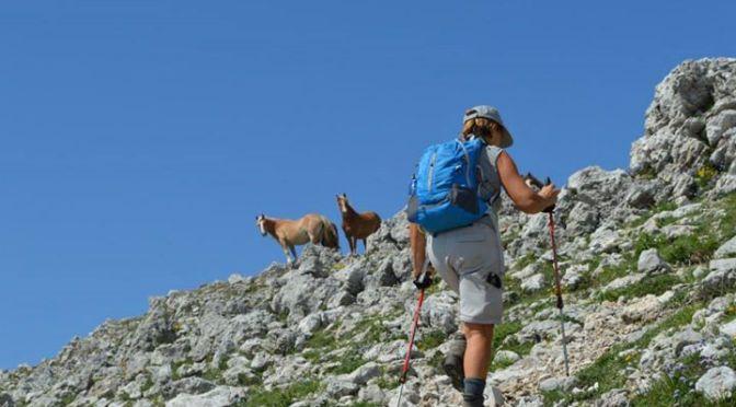 trekking monte cervati