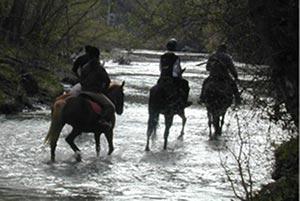 Passeggiate a cavallo fiume Mingardo